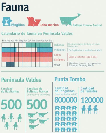 fauna en tu viaje a patagonia