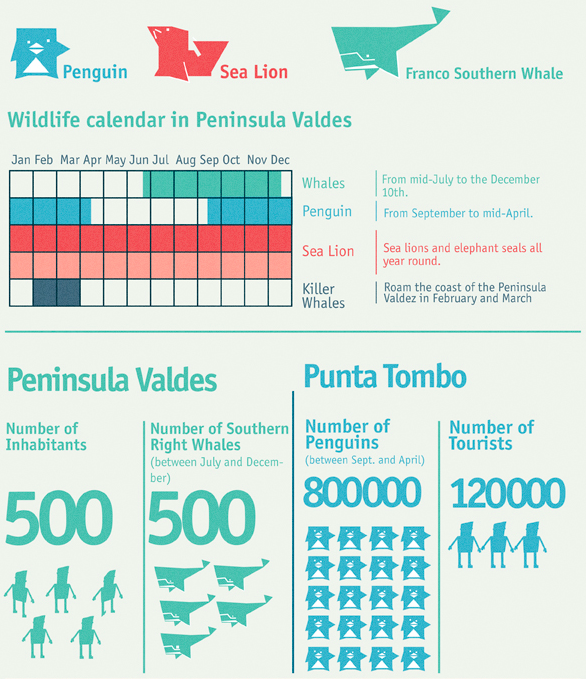 fauna kalender