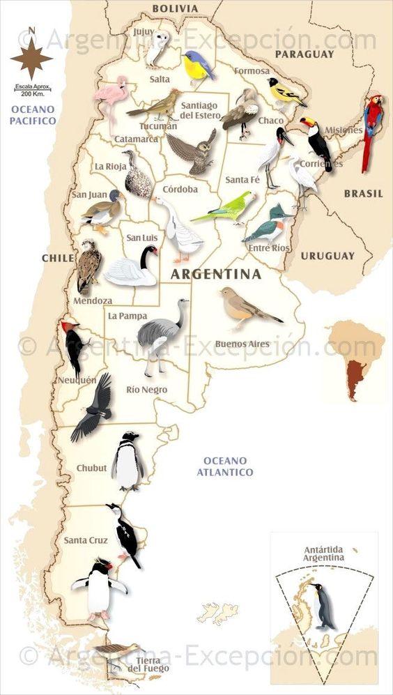 mapa aves argentina