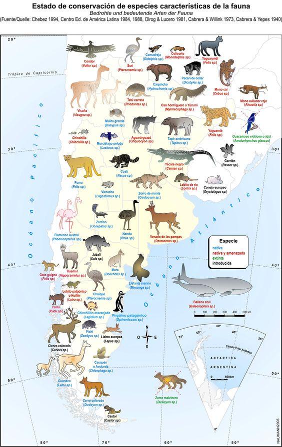 conservación de especies en patagonia