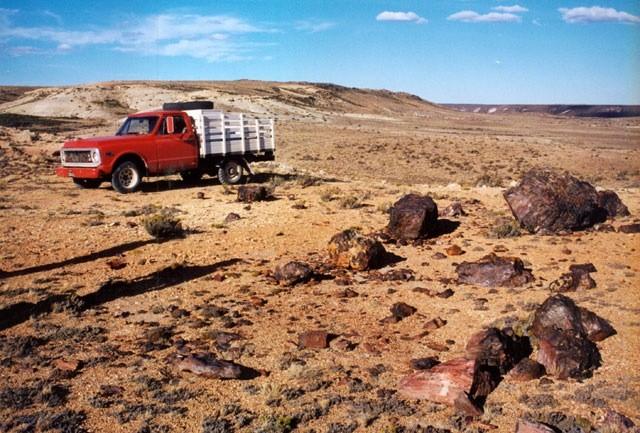 Camioneta en el Bosque Petrificado