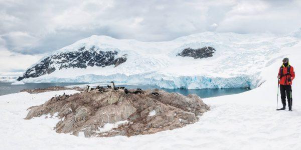 Cruise to Antarctica (Hurtigruten)