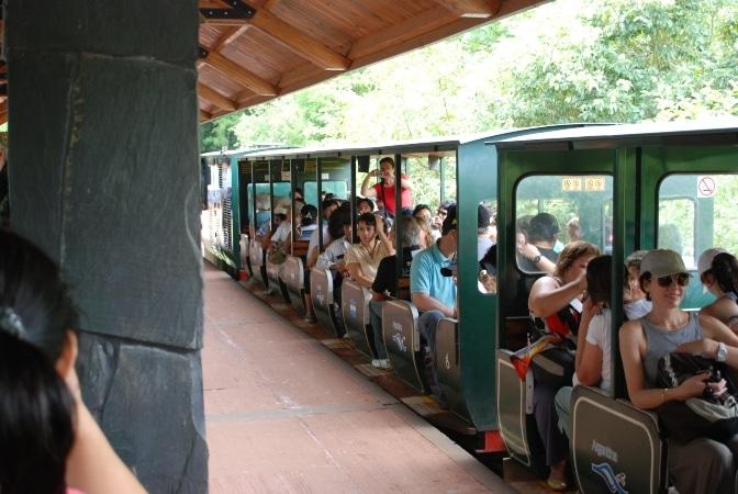 Tren en Puerto Iguazú