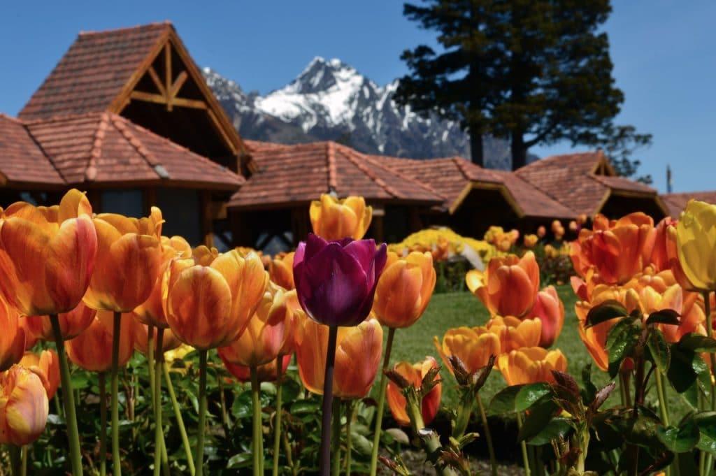 qué ver en Bariloche