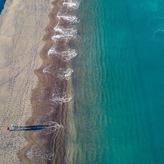 Ballenas desde playa del doradillo